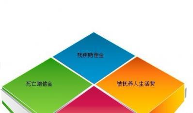 2013年河南省人身损害赔偿数据
